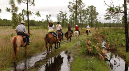Horse_Back_Riding_orlando_attractions_american_vacation_living-420x230