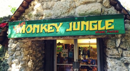 Monkey-Jungle_Miami-420x230